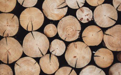 Brennholz bestellen